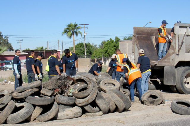 Cleaning up a large pile of old tires.