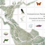 Conservation Priorities in the Colorado River Delta