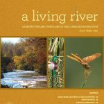 Living River - Charting Wetland Conditions of the Lower Santa Cruz River 2015 Water Year